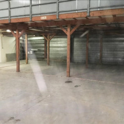 Location Local commercial Geispolsheim 280 m²