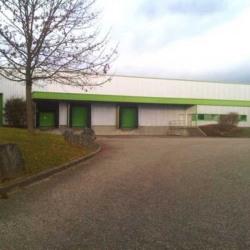 Location Local d'activités Colmar 2697 m²