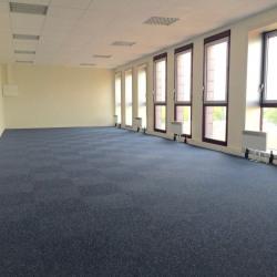Vente Bureau Montigny-le-Bretonneux 551 m²