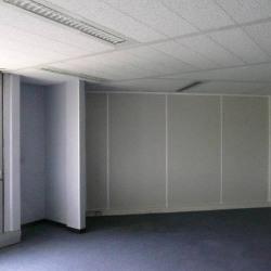 Vente Bureau Blagnac (31700)
