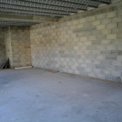 Location Local commercial Carros 80 m²