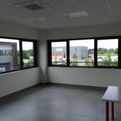 Location Local d'activités Ferrières-en-Brie 415 m²