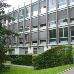 Location Bureau Cachan 150 m²