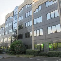 Location Bureau Maisons-Alfort 136 m²