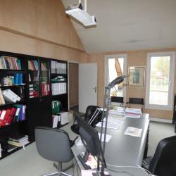 Location Local d'activités / Entrepôt L'Haÿ-les-Roses