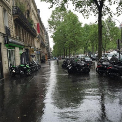 Location Local commercial Paris 16ème 82 m²