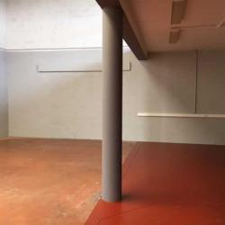 Location Local d'activités Conflans-Sainte-Honorine 336 m²