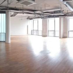 Location Bureau Paris 18ème 783,72 m²