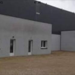 Vente Local d'activités Bessières 230 m²