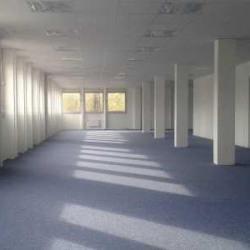Location Bureau Gif-sur-Yvette 1391 m²
