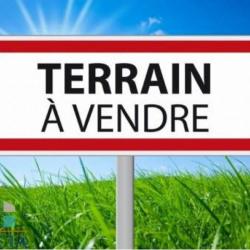 Vente Terrain Nogent-le-Roi 1000 m²