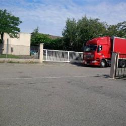 Location Local d'activités Toulouse 900 m²