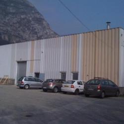 Location Local d'activités Saint-Martin-le-Vinoux (38950)