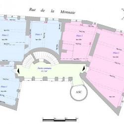 Location Bureau Lyon 2ème 484 m²