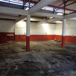 Location Bureau Fort-de-France 150 m²