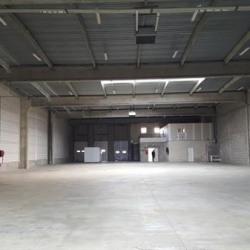 Vente Entrepôt Croissy-Beaubourg 1420 m²