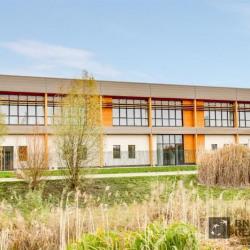 Location Local d'activités Collégien 865 m²