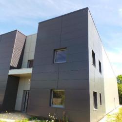 Vente Local d'activités Bailly-Romainvilliers 518 m²