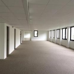 Location Bureau Charenton-le-Pont 595 m²