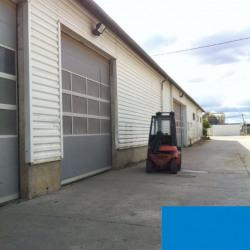 Location Local d'activités Fenouillet 1450 m²