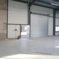 Location Local d'activités Garidech 1238 m²