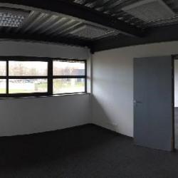 Location Local d'activités Brie-Comte-Robert 350 m²