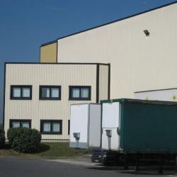 Location Local d'activités Brie-Comte-Robert 2800 m²