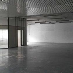 Vente Local d'activités Vitry-sur-Seine 555 m²