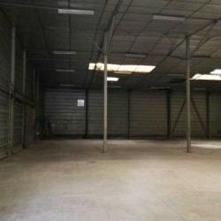 Vente Entrepôt Meaux 5200 m²