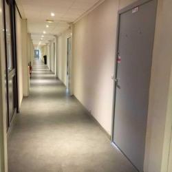 Location Local d'activités Pontoise 250 m²