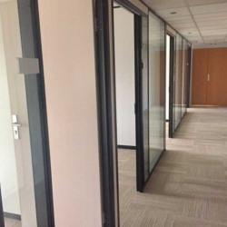Location Bureau Charenton-le-Pont 131 m²