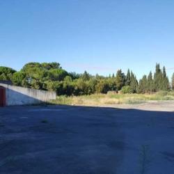 Location Local d'activités Béziers 3240 m²