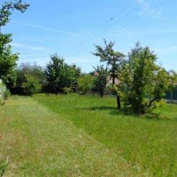 Vente Terrain Muides-sur-Loire (41500)