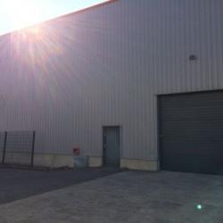 Vente Local d'activités / Entrepôt Gondecourt