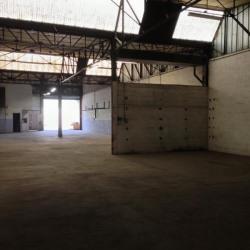 Location Local d'activités Sorgues 410 m²