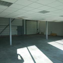 Location Local d'activités Saint-Marcel-lès-Valence 300 m²