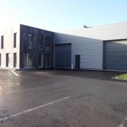 Location Local d'activités Wasquehal 385 m²