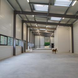Location Entrepôt Orsay 465 m²