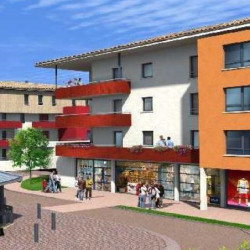 Vente Local commercial Quint-Fonsegrives 67 m²