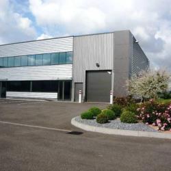 Location Local d'activités Altorf (67120)