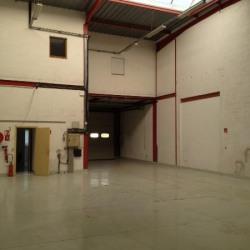 Location Local d'activités Émerainville 224 m²