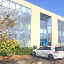 Vente Bureau Entzheim 454 m²