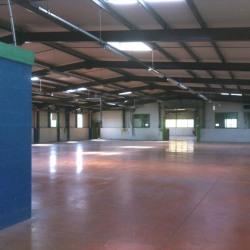 Location Local d'activités Chatte 1587 m²