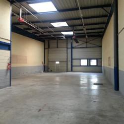 Location Local d'activités Chelles 416 m²
