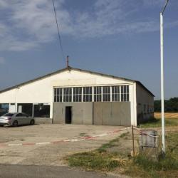 Vente Local d'activités Lapeyrouse-Mornay 500 m²