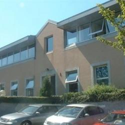 Location Bureau Fourqueux 313 m²