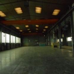 Vente Local d'activités Sarrebourg 1302 m²