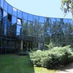 Location Local d'activités Saclay 415 m²