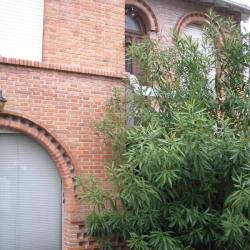 Maison Ancien Années 30 rénové