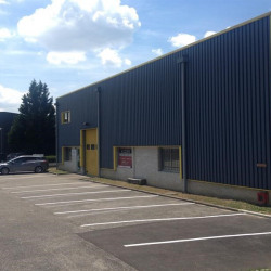 Location Local d'activités Ternay 910 m²